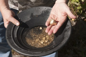 A person pans for gold - a metaphor for what an employment agency does