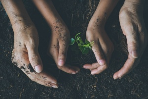 Corporate social responsibility: teaching kids how to use their hands